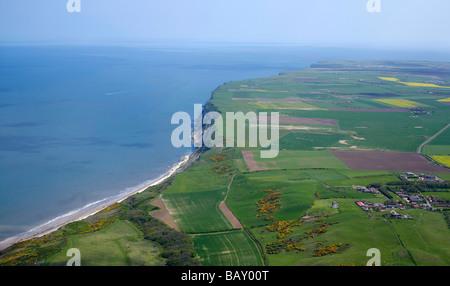 Flamborough Head, Yorkshire East Coast, between Filey and Bridlington, Yorkshire, Northern England - Stock Photo