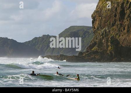 Piha Beach and Lion Rock, west coast near Auckland, New Zealand - Stock Photo