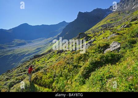 young woman hiking in lush green cirque, Stubaier Alpen range, Stubai, Tyrol, Austria - Stock Photo