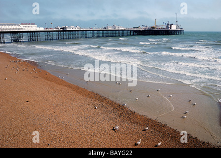 Brighton Pier with beach at low tide in foreground - Stock Photo