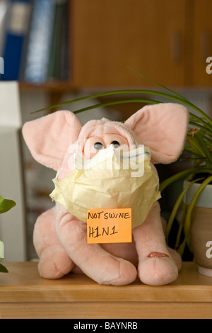 A stuffed pig wears a mask and a sign that declares the swine flu should be called H1N1. - Stock Photo