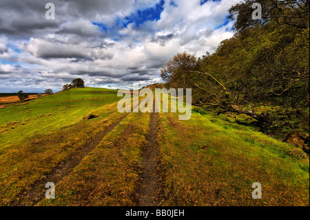 Farm track near disused quarry on the line of Hadrian's Wall at Walltown Crags Cumbria - Stock Photo