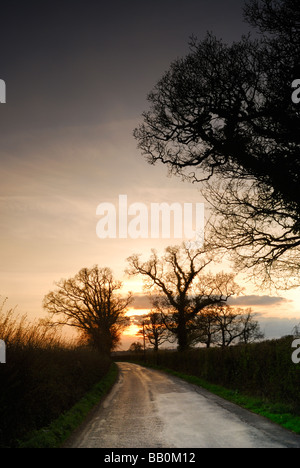 Narrow country lane in the small village of Seend near Devizes Wiltshire UK - Stock Photo