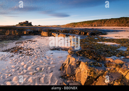 Rock Ledges and Bamburgh Castle in Morning light - Stock Photo