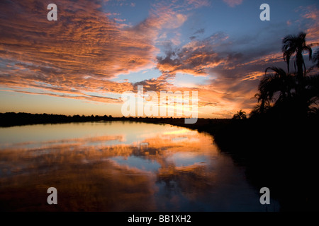 Sunset with clouds and palm trees over the Okavango river. Near Shakawe, Botswana. - Stock Photo