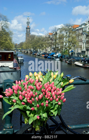 Europe, Netherlands, North Holland, Amsterdam, Tulips and bike on the Prinsengracht, Westerkerk in background - Stock Photo
