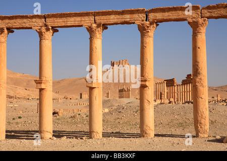 Ancient ruins, Palmyra, Syria - Stock Photo