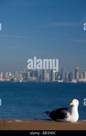 California, San Diego. View of downtown San Diego. - Stock Photo