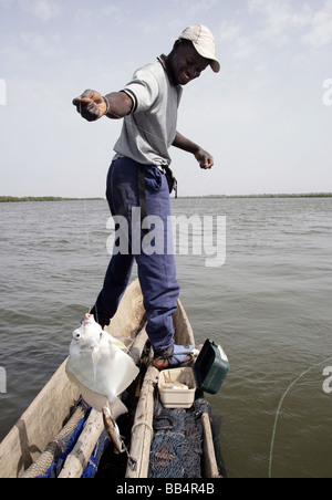 Senegal: Fisherman in his dugout canoe on the river Casamance - Stock Photo