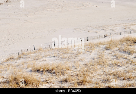 Beach fence in sand for erosion control at Lighthouse Beach in Chatham Cape Cod - Stock Photo