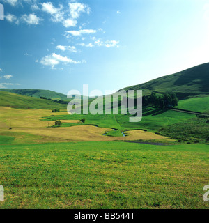 Mountains and rolling hills landscape of Cezallier, Auvergne, France, Europe