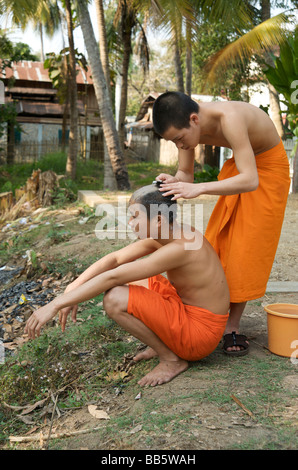 Novice Buddhist monks take it in turns to shave their heads during bathing time in their Luang Prabang temple - Stock Photo