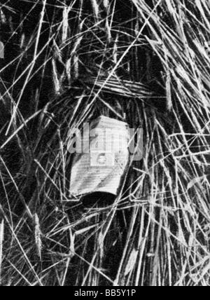 events, Great Depression 1929 - 1933, pawn ticket on a field, garnishment of the corn, Germany, circa 1931, distress, - Stock Photo
