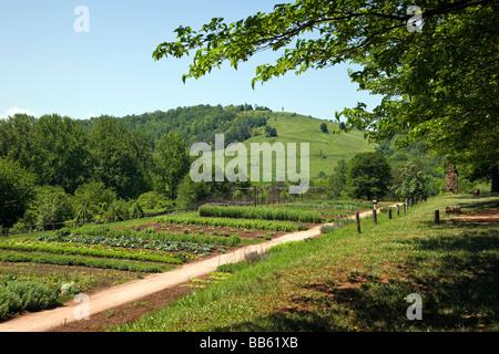 Thomas Jeffersonu0027s Garden At Monticello · The Vegetable And Flower Gardens  At Monticello Thomas Jefferson S Former Home And Plantation Near  Charlottesville