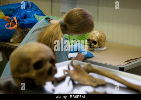 Anthropologist examining a human skull at the mortuary facility of ICMP commission of missing persons in town of - Stock Photo