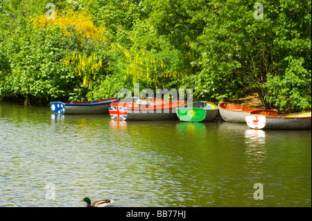 Colourful rowing boats moored on the island in middle of the lake, in Finsbury Park, North London. - Stock Photo