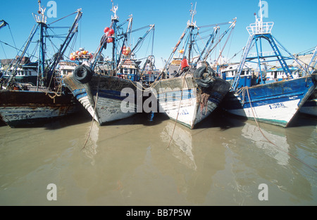 Moored fishing vessels in row in the harbour of Essaouira, Morocco - Stock Photo