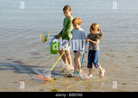 Children walking on the beach, seaside with fishing net and bucket at the Adria, Bibione, Venetia, Venice, Italy, - Stock Photo