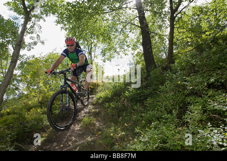Mountain bike rider riding along a singletrail on Orenberg Mountain, Willingen, Hesse, Germany, Europe - Stock Photo