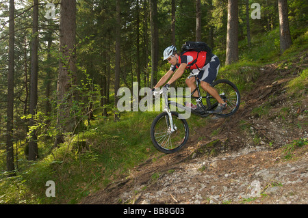Mountainbike rider riding along a root trail in a forest near Garmisch, Upper Bavaria, Bavaria, Germany, Europe - Stock Photo