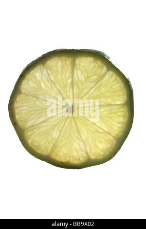 Fresh green sour lime - Stock Photo