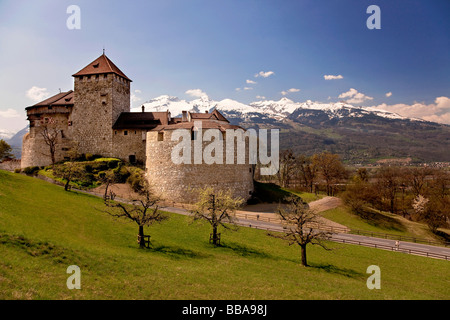 Castle above Vaduz, Alps, Rhine Valley, Lichtenstein - Stock Photo
