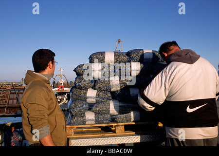 italy, le marche, san benedetto del tronto, fishermen - Stock Photo