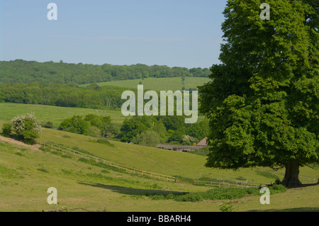A View Up To The North Downs From Tandridge Surrey England - Stock Photo