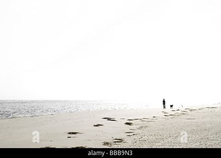 person walking dog on beach - Stock Photo