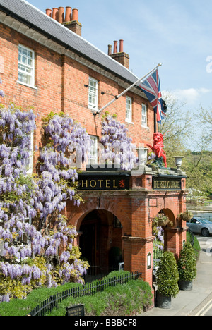 WISTERIA COVERING THE FACADE OF THE RED LION HOTEL IN HENLEY-ON-THAMES. APRIL 2009 - Stock Photo