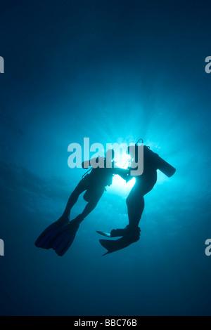 Two male divers in sea off Zanzibar - Stock Photo