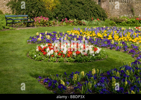 Sheffields City Botanical Gardens  in spring time South Yorkshire England UK - Stock Photo
