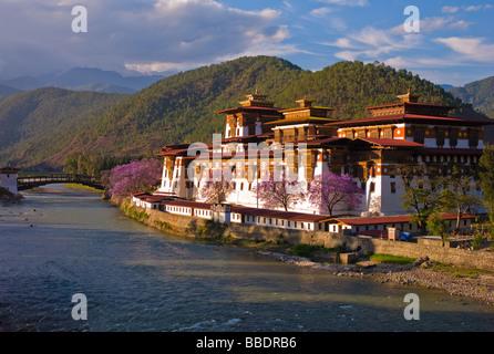 Punakha Dzong - Bhutan - Stock Photo