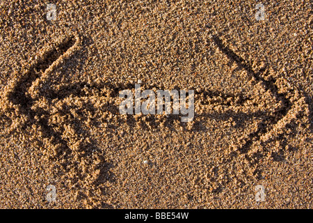 closeup of a double sided arrow sign in sand on a beach - Stock Photo