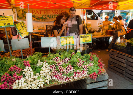 Radishes and other vegetables on sale at farmers stands in the Union Square Greenmarket in New York - Stock Photo