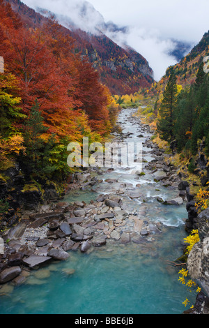 Arazas river, Ordesa Valley, Spanish Pyrenees - Stock Photo
