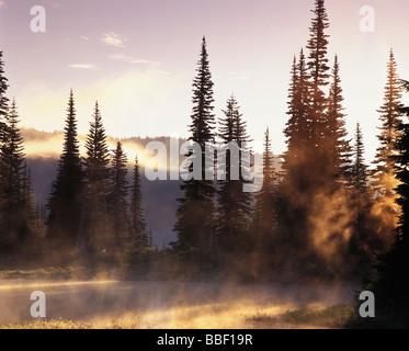 Morning fog lifting off Reflection Lake in Mt Rainier National Park Washington - Stock Photo
