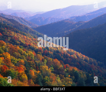 Autumn color in the Smoky Mountains National Park Tennessee - Stock Photo