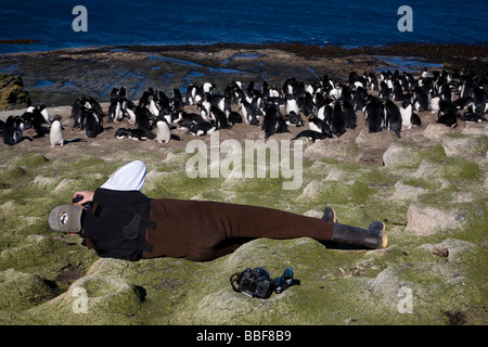 Tourist photographing Rock Hopper Penguins on Bleaker Island, Falkland islands - Stock Photo