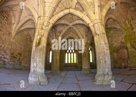 Interior of Chapter House Valle Crucis 13th century Cistercian Abbey Ruins near Llangollen North Wales Cymru UK - Stock Photo