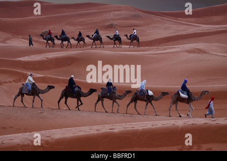 Africa, North Africa, Morocco, Sahara Desert, Merzouga, Erg Chebbi, Tourists Riding Camels in the Rain - Stock Photo