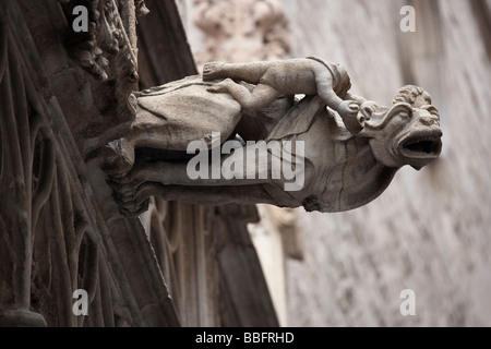 gargoyle on a street in Barcelona, Spain, Europe, barrio Gotico Vella Catalonia - Stock Photo