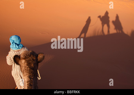 Africa, North Africa, Morocco, Sahara Desert, Merzouga, Erg Chebbi, Berber Tribesman Leading Camel, Shadows in the - Stock Photo