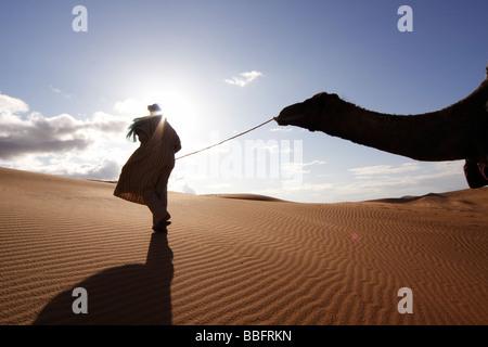 Africa, North Africa, Morocco, Sahara Desert, Merzouga, Erg Chebbi, Berber Tribesman Leading Camel - Stock Photo