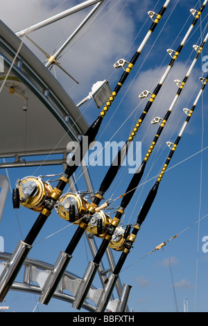 Fishing rods and reels. - Stock Photo
