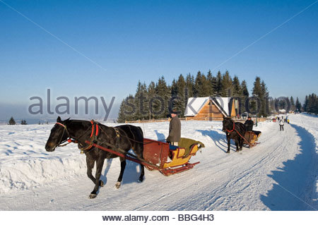 People Enjoy Ride In Horse Drawn Open Sleigh On Gubalowka Hill, Zakopane, Tatra Mountains - Stock Photo