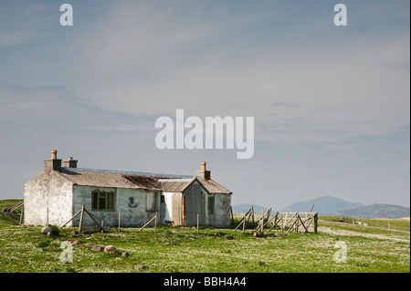 Derelict cottage surrounded by a daisy field on the west coast of South Harris, Outer Hebrides, Scotland - Stock Photo