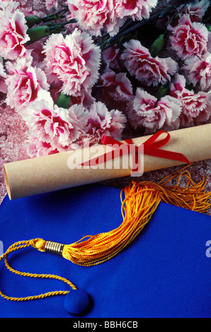 Graduation cap and diploma - Stock Photo