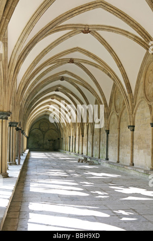 Salisbury Cathedral cloisters - Stock Photo