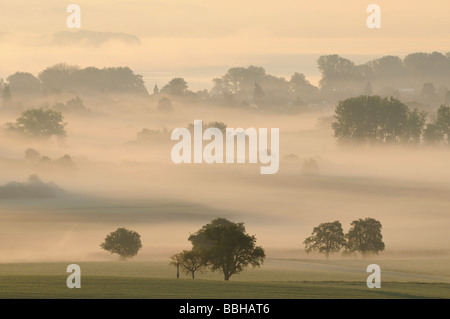Morning mist in Radolfzeller Aachried, county of Constance, Baden-Wuerttemberg, Germany, Europe - Stock Photo